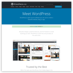 wordpress.org网站截图